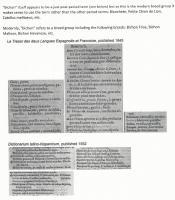 https://oscar.sca.org/images/cImages/1027/2019-04-12/12-59-46_Geneviefve_dEstelle-bichondoc3.jpg