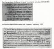 https://oscar.sca.org/images/cImages/1027/2019-04-12/12-59-46_Geneviefve_dEstelle-bichondoc4.jpg